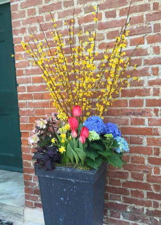 A planter in front of the church entrance holds forsythia, hydrangea, tulips, daffodils, oxalis, and hellebores